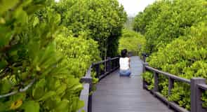 Pran Buri National Forest Park Office