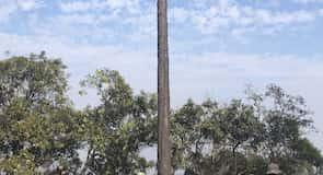 Taman Nasional Phu Kradung