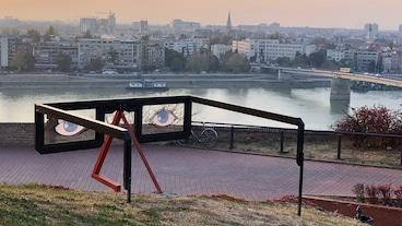 Petrovaradinin