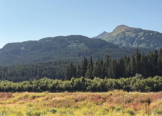 Kenai, Alaska, Verenigde Staten