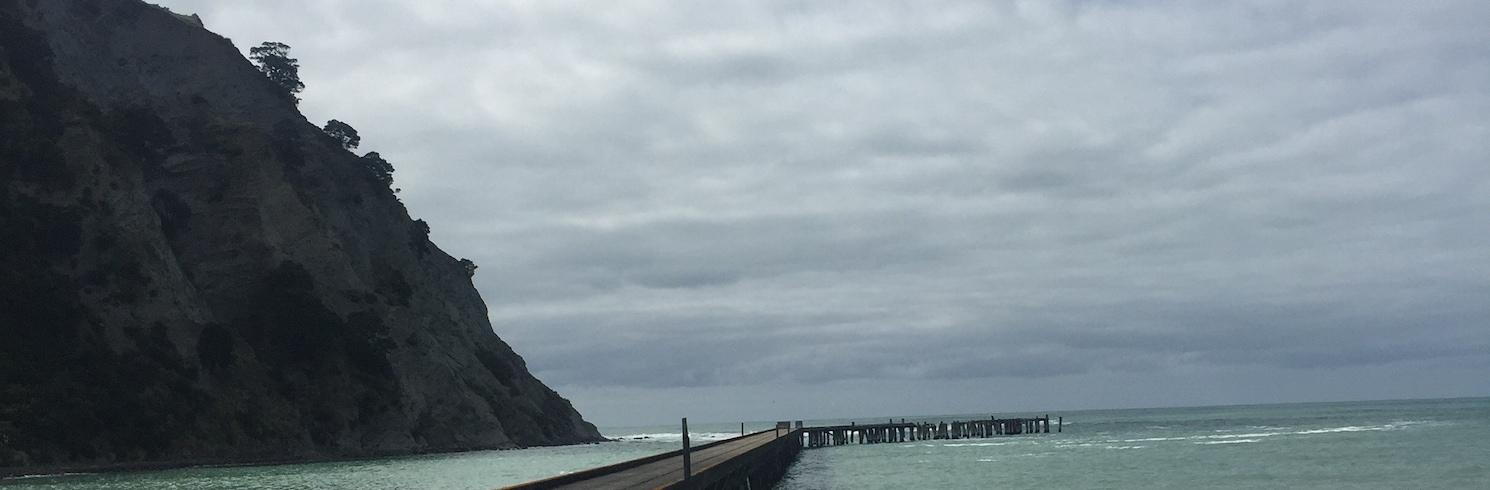 โทโกมารุ, นิวซีแลนด์