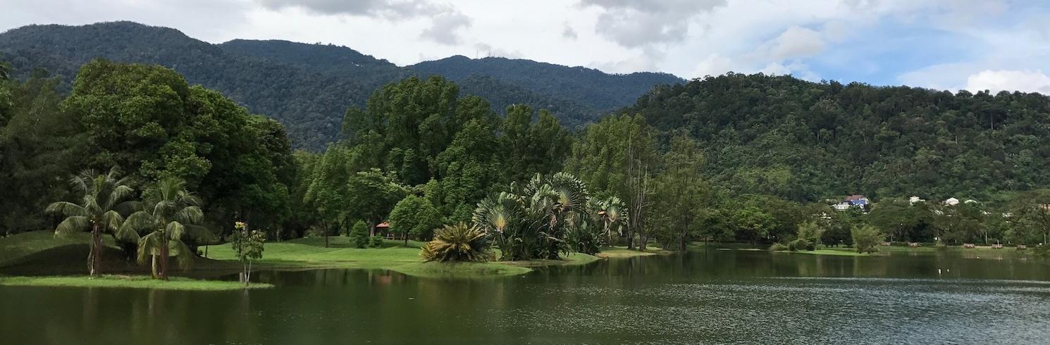 太平, 馬來西亞