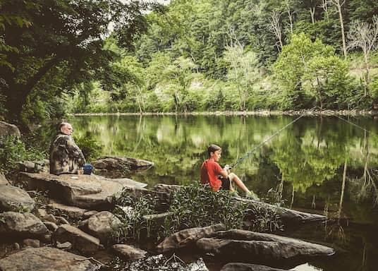 Ronceverte, Virginie-Occidentale, États-Unis d'Amérique