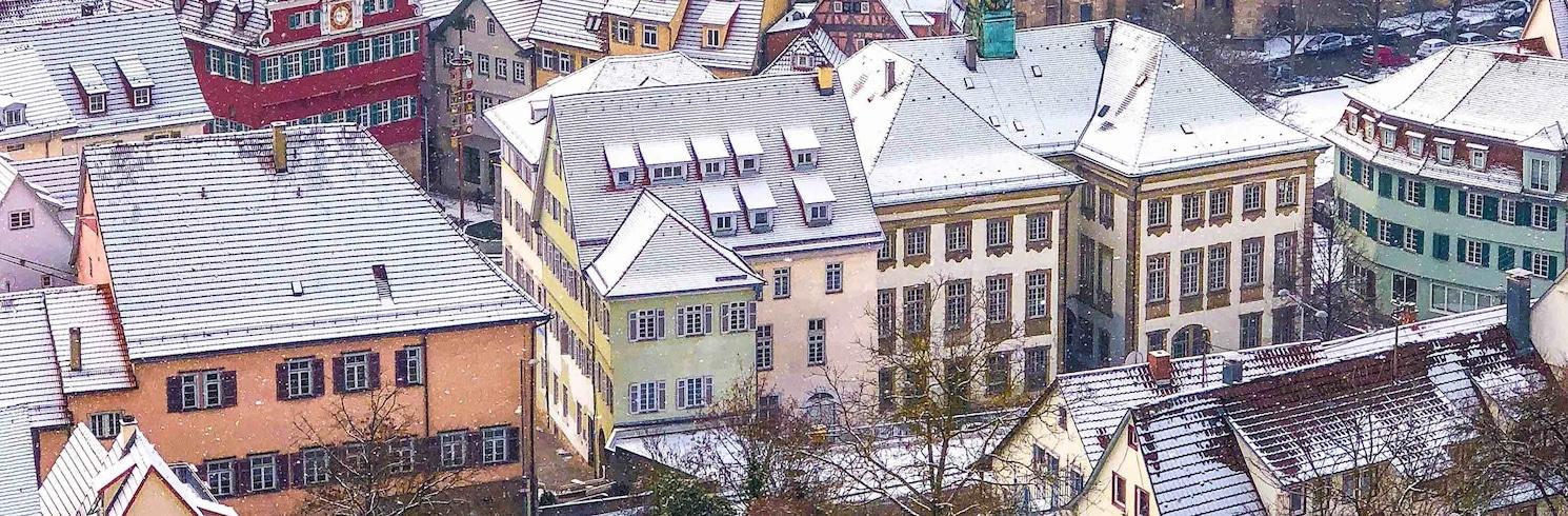 Esslingen, Germania