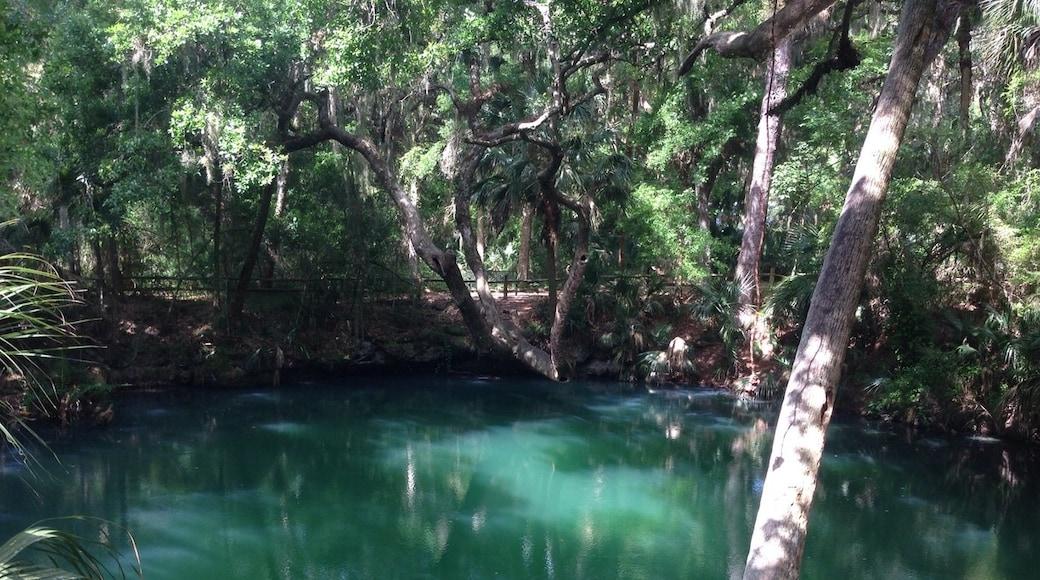 Foto von Florida Traveler