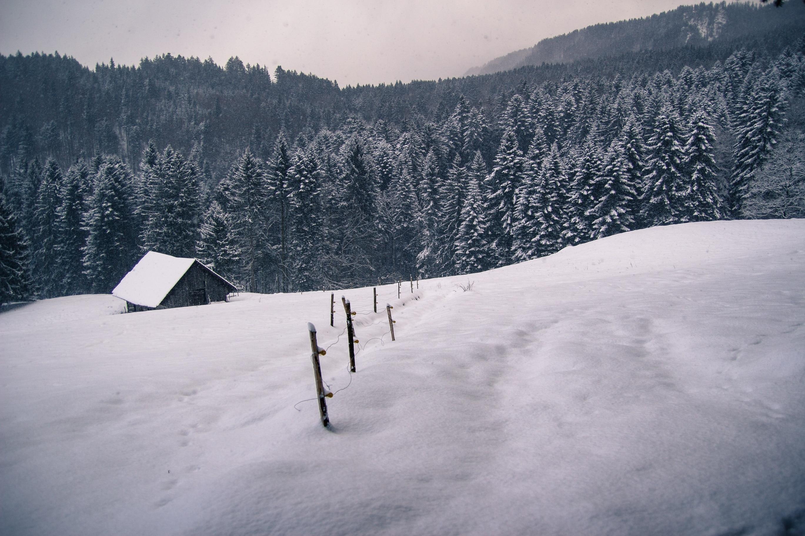 Fiesch, Valais, Suisse