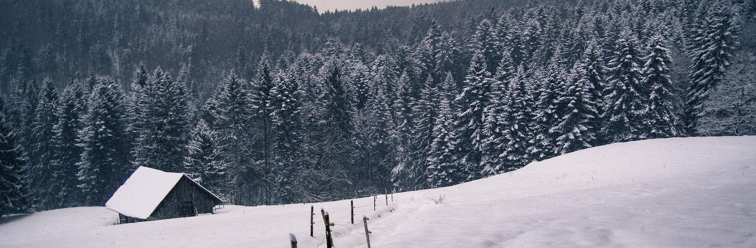 費思齊, 瑞士
