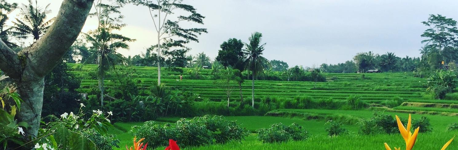 Kelusa, Indonesia