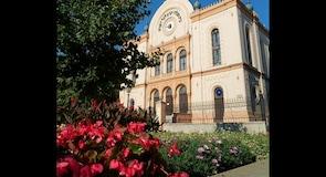 Pécs synagoga