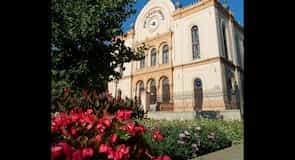 Pecs synagoge