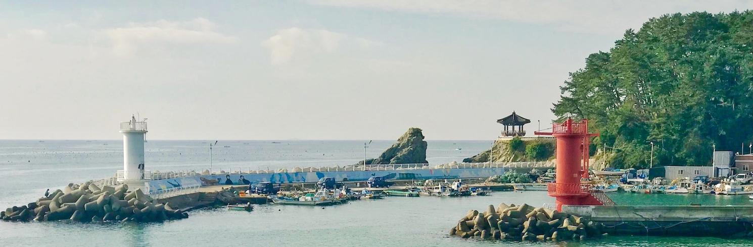 沙上區, 韓國