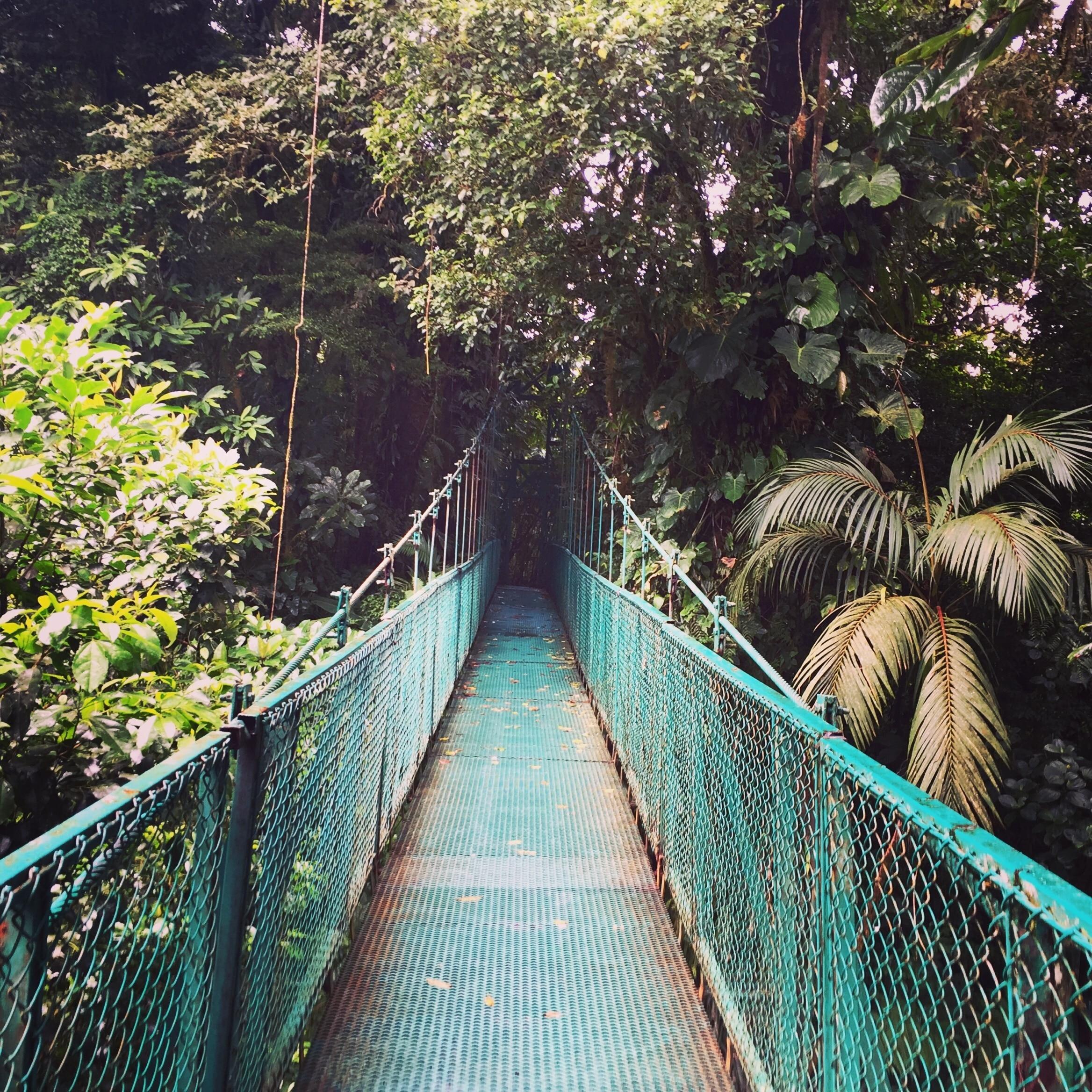 Selvatura Adventure Park, Tronadora, Guanacaste, Costa Rica