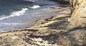Stranden med det sorte sand