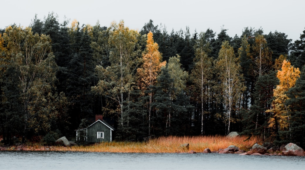 Kuva: Jani Hiltunen
