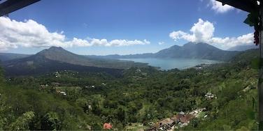 Andong, Ubud, Bali, Indonésie