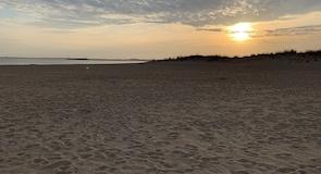 Lewes Plajı