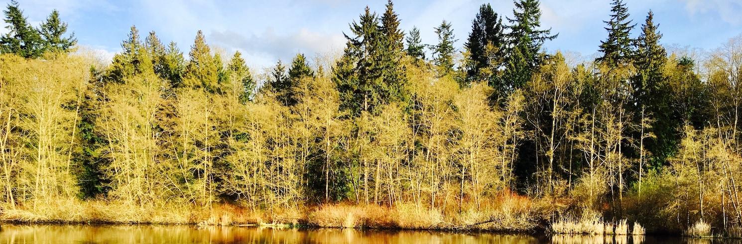 Lynnwood, Washington, Egyesült Államok