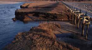 Plaža Grays