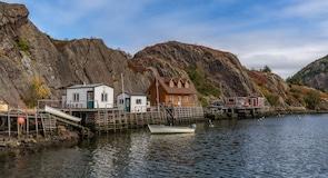 Miðbær St. John's