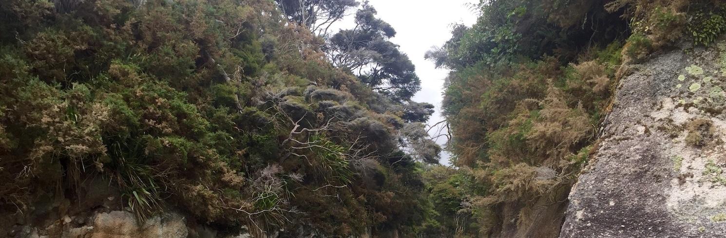 Awaroa Bay, New Zealand