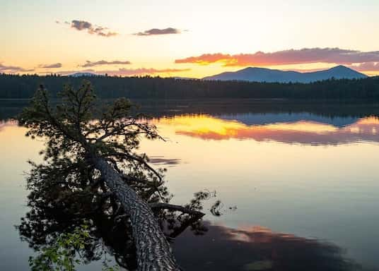 Tamworth, New Hampshire, Spojené štáty