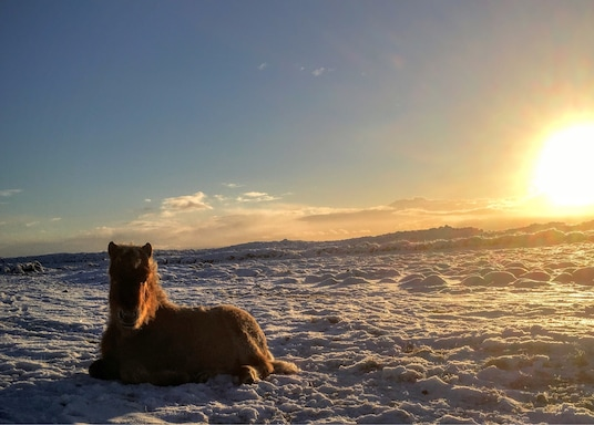 Hvolsvollur, Islândia
