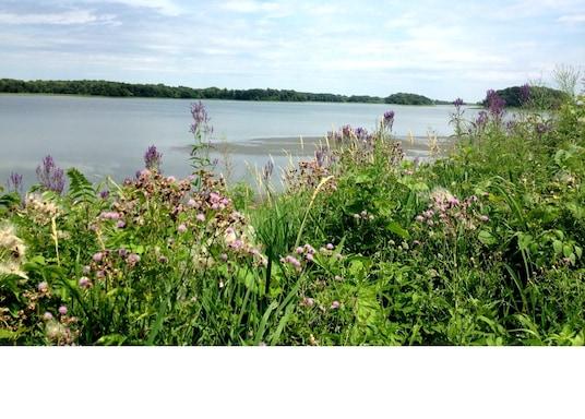 Lake Mills, Iowa, Amerika Serikat