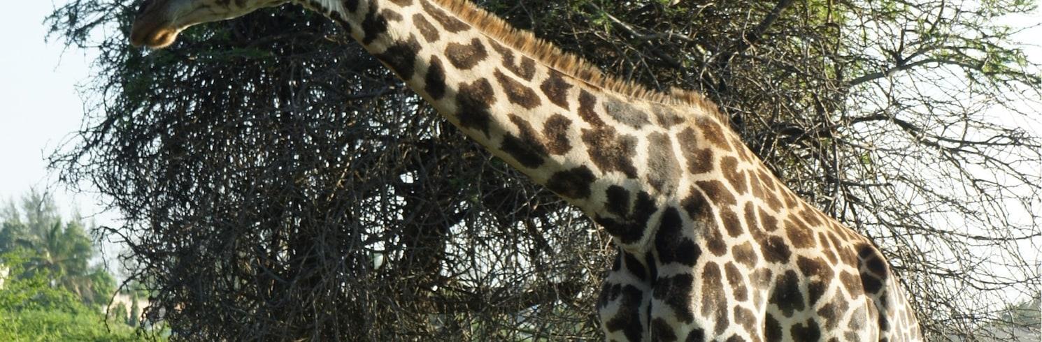 Bamburi, Kenija