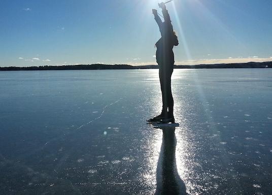 阿爾維卡, 瑞典