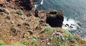 Latrabjargin kalliot