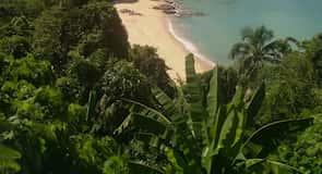 شاطئ لايم سينغ