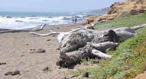 Moonstone 海灘公園