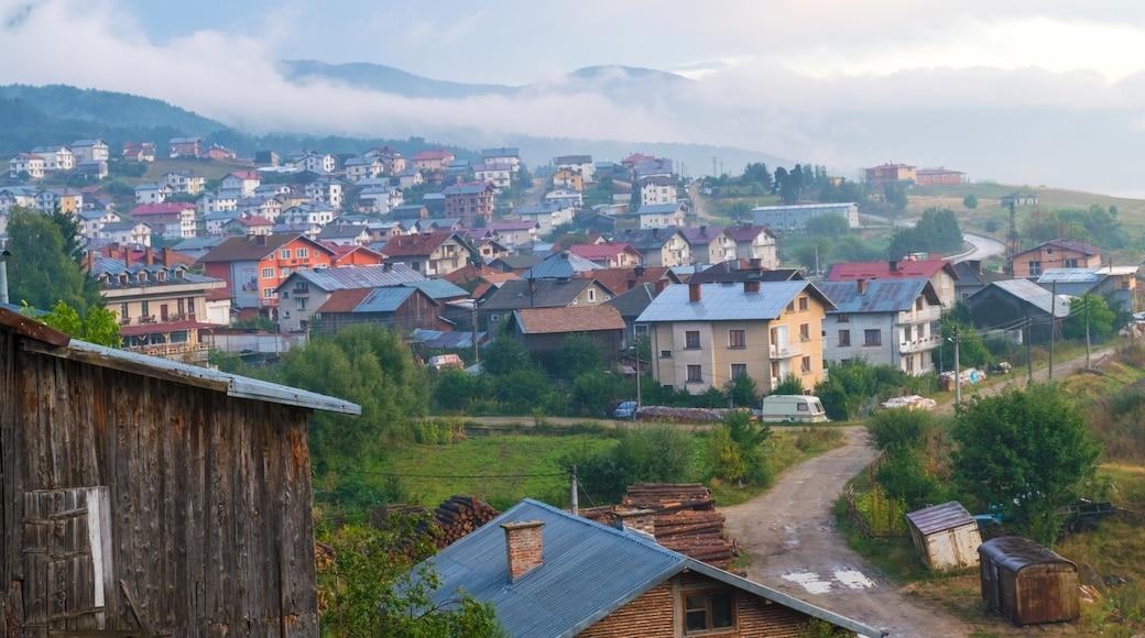 Photo by Hristo Hristov