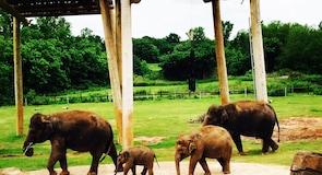 Oklahoma City Zoo