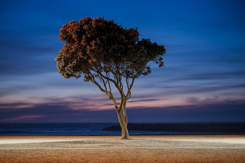 Strand Bay Beach, Espinho, Portugal