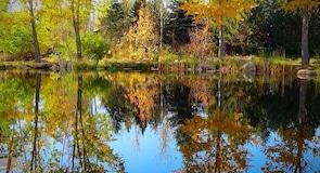 Yampa River Botanic Park
