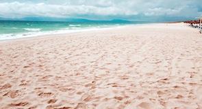 Comporta tengerpart