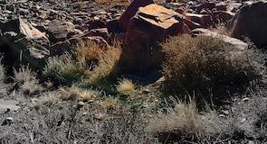 Государственный парк Lake Pueblo
