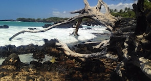 หาด Waialea