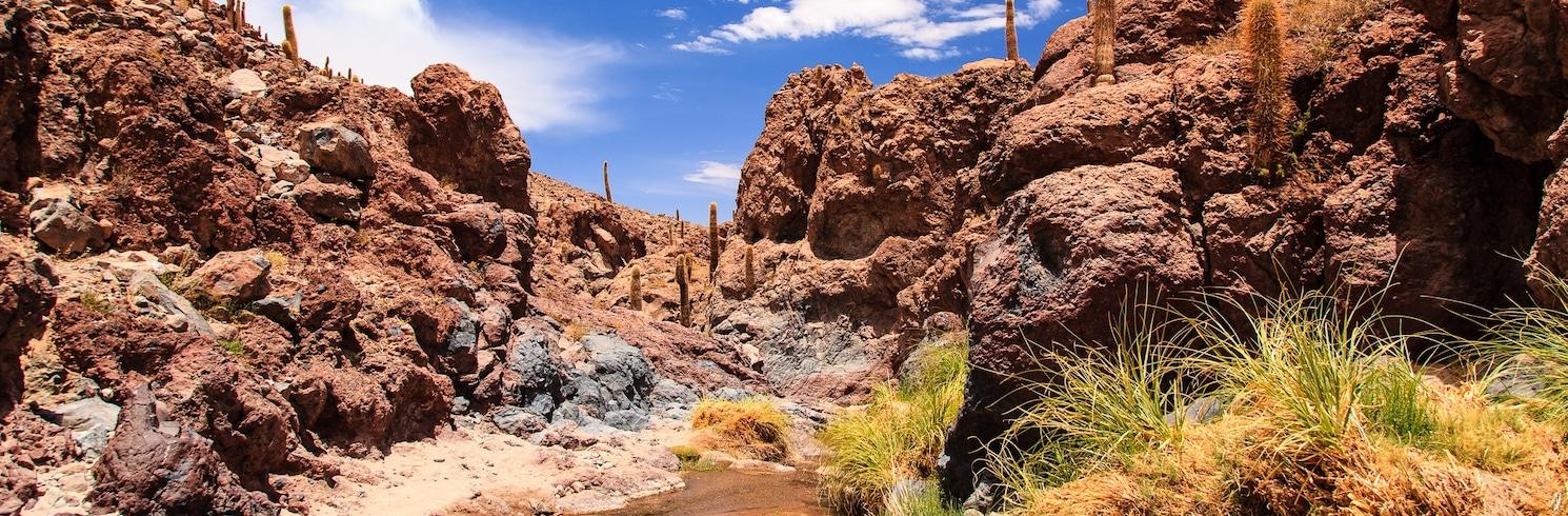 San Pedro de Atacama (a okolie), Chile