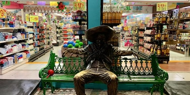 This life size statue sits outside a huge gift shop/pharmacy/liquor store in Isla Mujeres. I wonder how many people have posed with him? #mexico #islamujeres #lifesize #mexican #centroislamujeres #statue #giftshop #flashpackingbarbie #cnntravel #expediatravel #worldtrip2019 #hombre