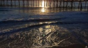 Redondo Plajı Rıhtımı