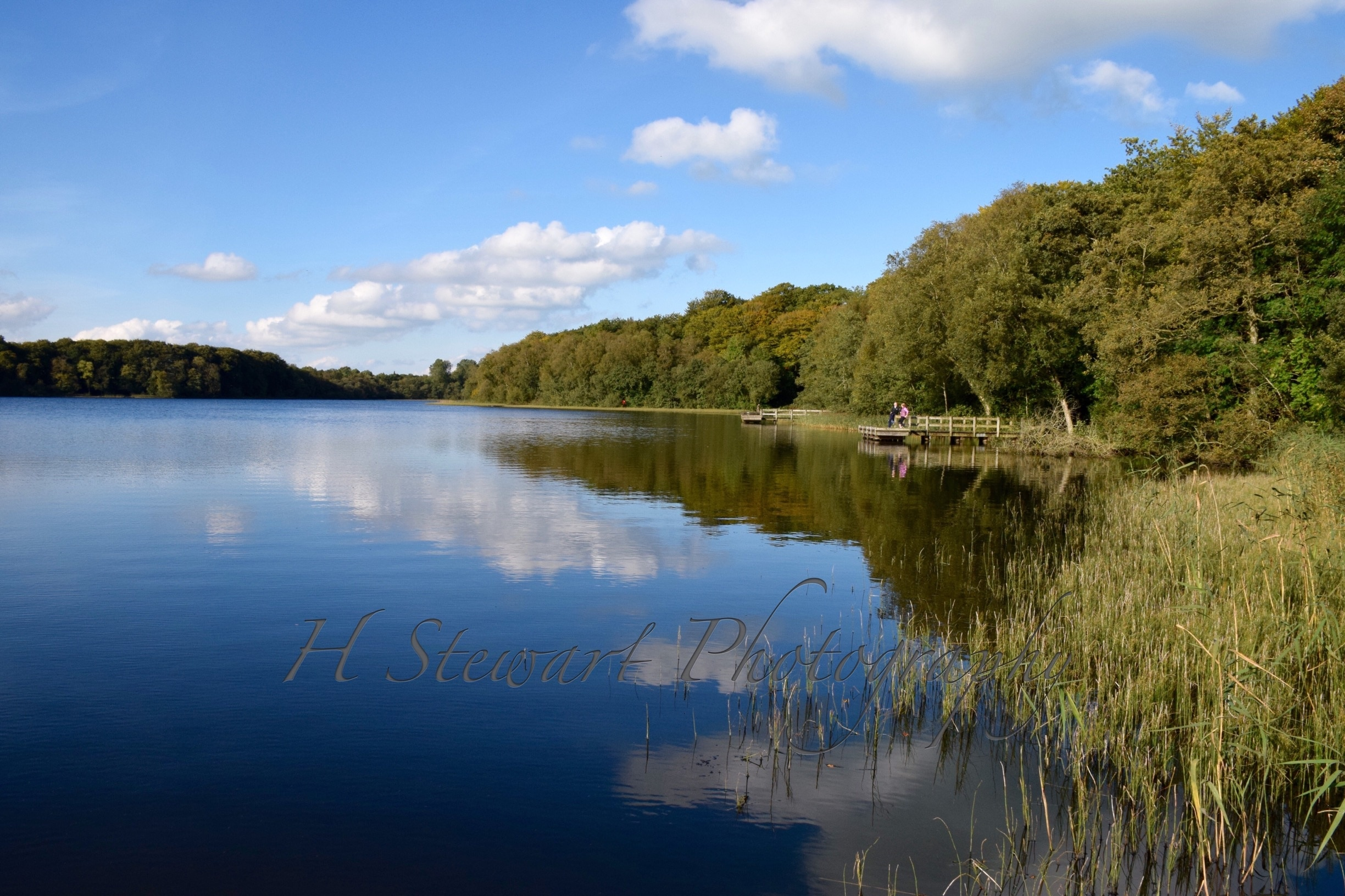 Dungannon and South Tyrone, Northern Ireland, United Kingdom