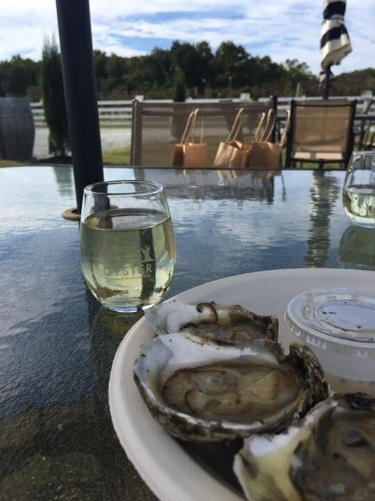 The Dog and Oyster Vineyard, Irvington, Virginia, United States of America