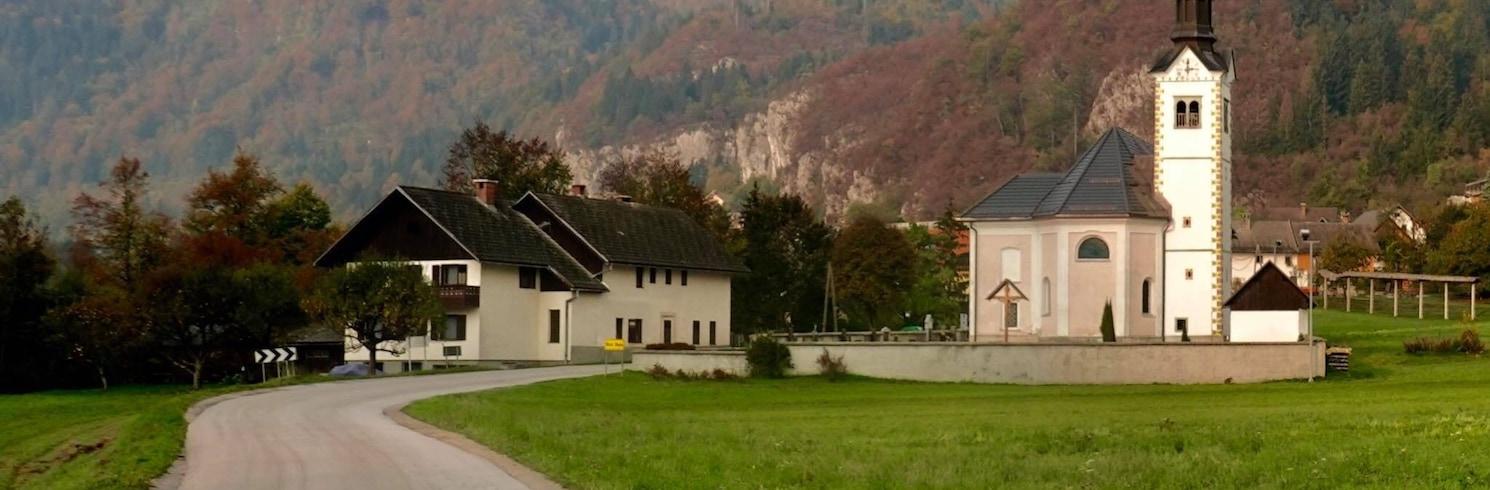 بوهينيسكا بيستريكا, سلوفينيا