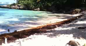 חוף Madama