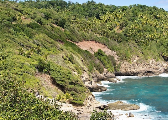 Atkinson, Dominica
