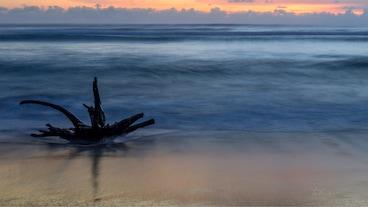 หาดบิแอส