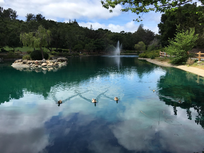 Menlo Park, California, United States of America