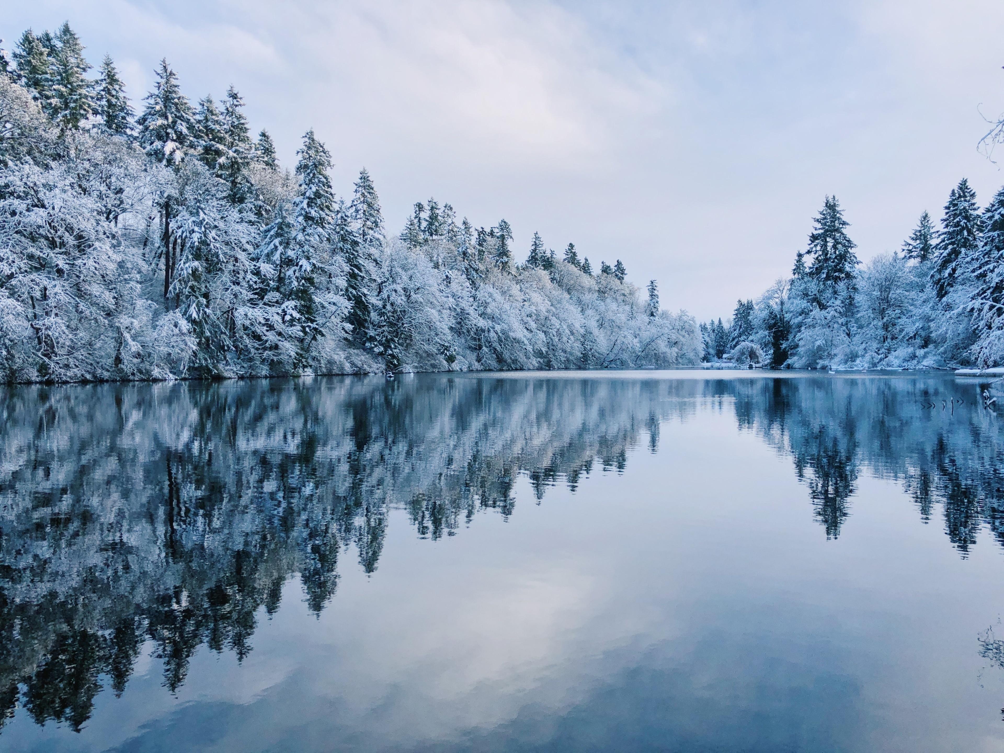 Lake Fenwick Park, Kent, Washington, Verenigde Staten